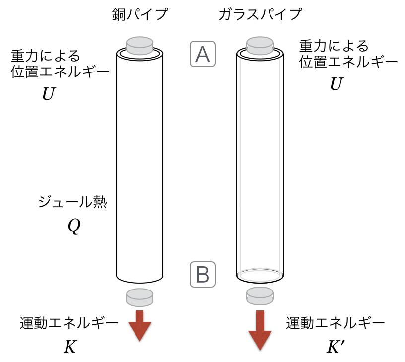 1B-5-5